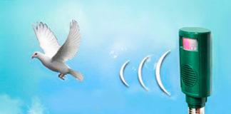 Виды отпугивателей для птиц