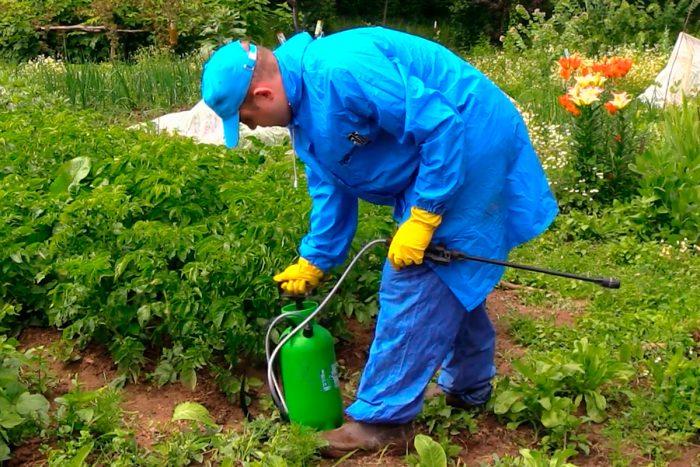 Правила работы с пестицидами