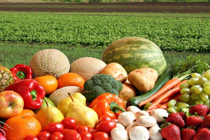 Лежкость овощей