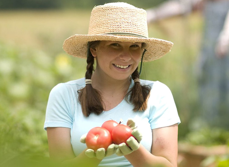 Польза от помидор для женщин
