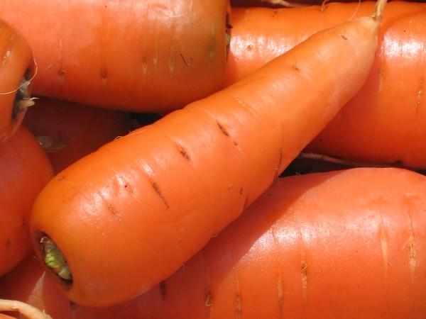 Витамины из моркови