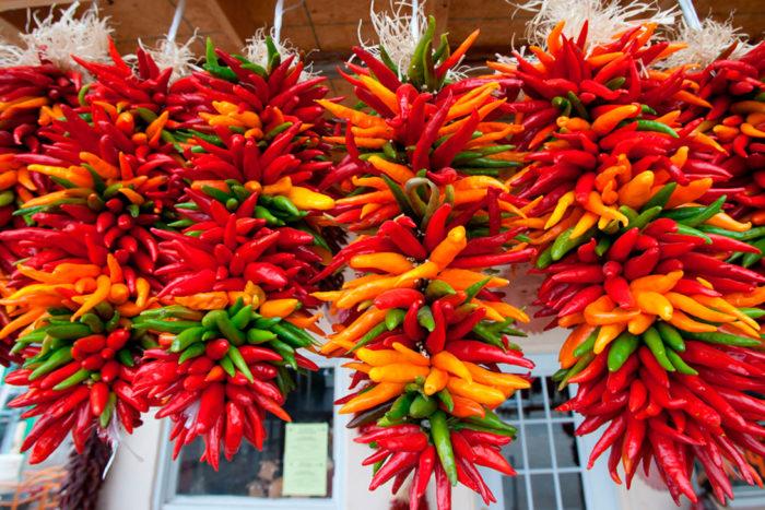 Перец Чили разных видов