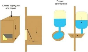Поилка и кормушка для зерна по методу Михайлова, схема
