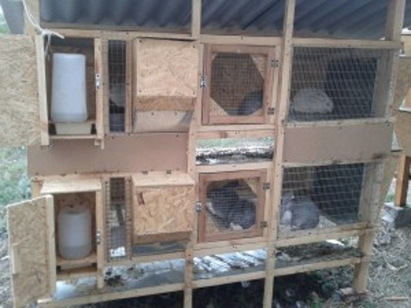Клетки для кроликов Н.И. Золотухина