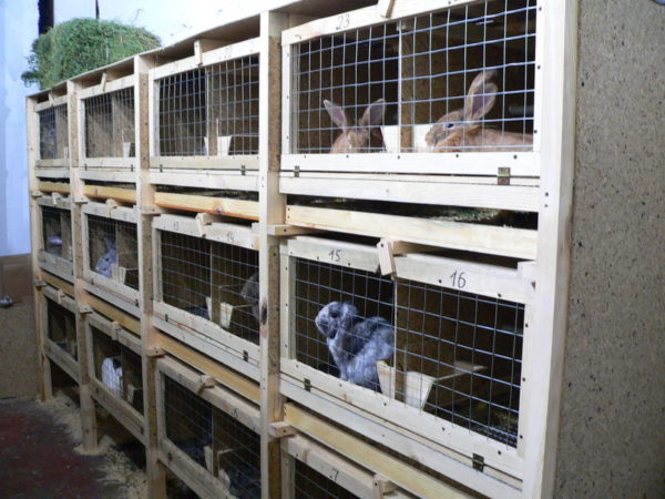 Трехъярусная клетка для кроликов