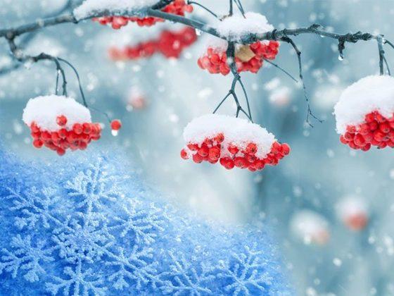 Если женщине приснился снег летом, сон обещает ей встречу с незнакомцем и сексуальное влечение, хорошее здоровье и благополучие.