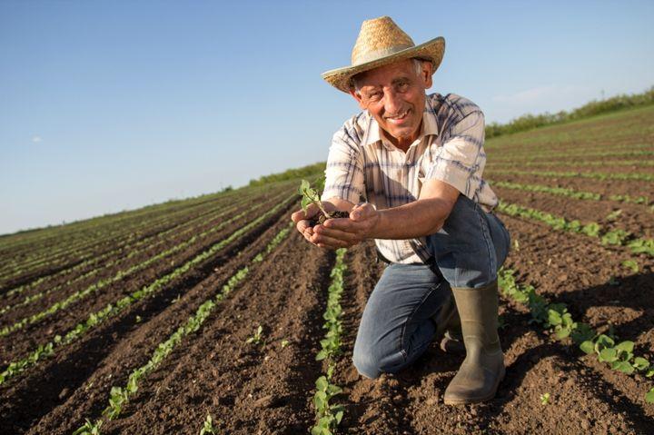 Фермер пенсионер