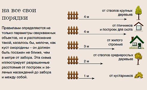 Схема расстояний от забора до различных объектов на территории загородного участка