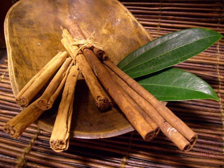 Корица - это кора тропического дерева