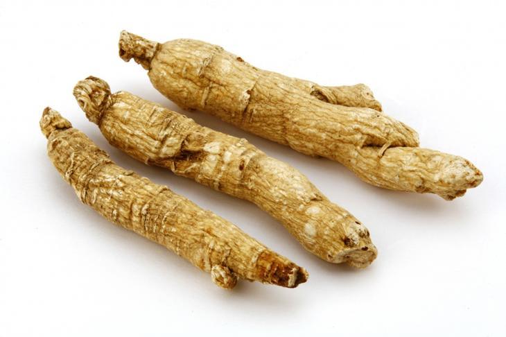 Напиток из корня цикория в рационе питания: польза