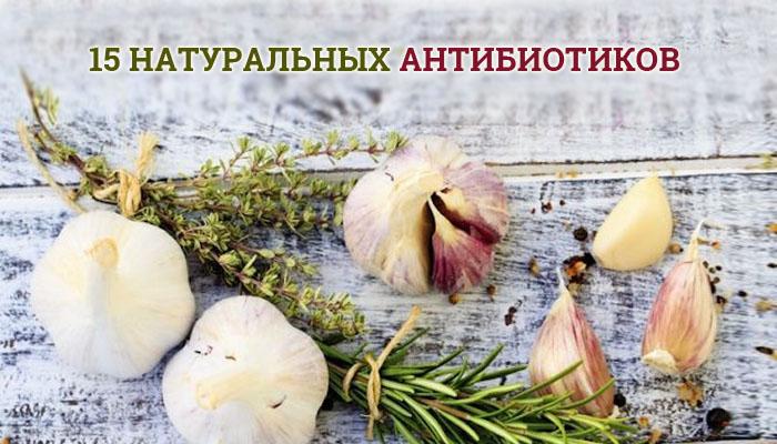 naturalnye-antibiotiki-15-luchshix-prirodnyx-sredstv