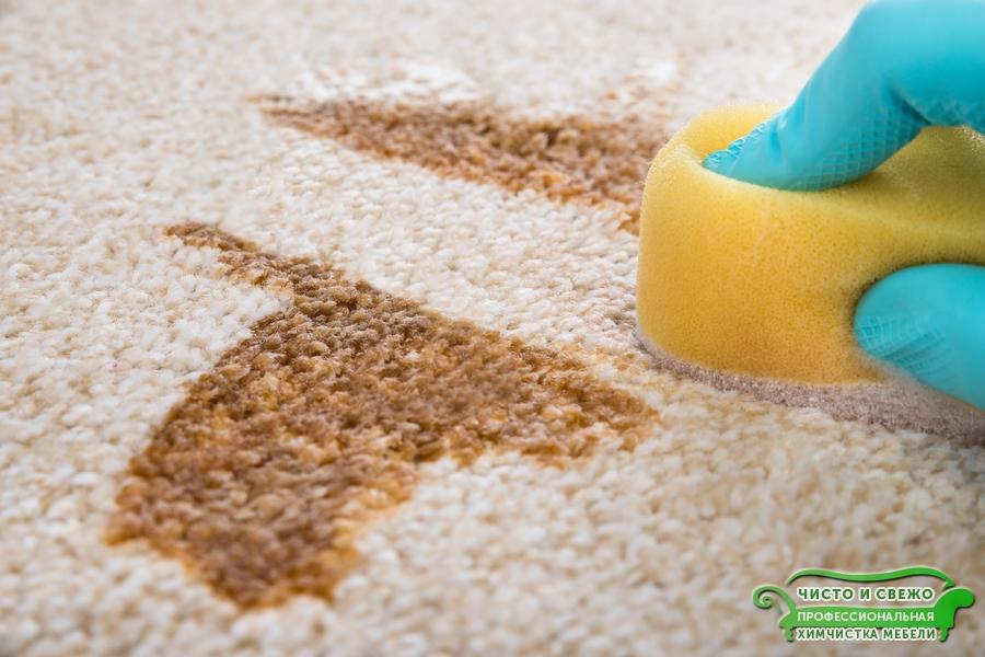 Удаление сложных пятен с ковров